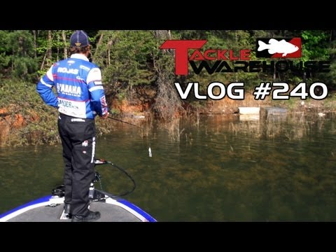 New Spro Bronzeye Shad with Dean Rojas at Lake Lanier  - Tackle Warehouse Vlog 240