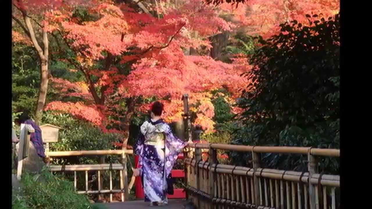 Jardines japoneses 2 hd 3d arte y jardiner a dise o de for Jardines japoneses zen