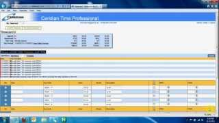 Ceridian Payroll Review