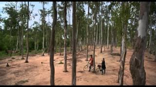 Basanta Utsav - Basanto Utsav Trailor