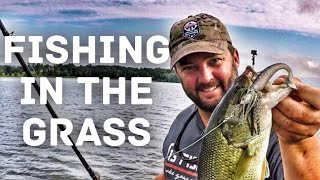 How to Fish a Chatterbait in the Grass - Bass Fishing in the Summer