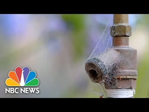 California Drought Hits Driest Level | NBC News