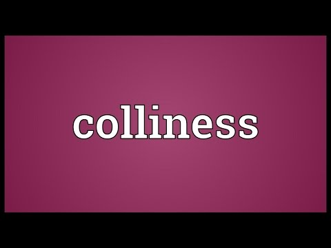 Header of Colliness