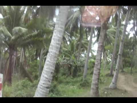 TAGUM CITY DAVAO DEL NORTEL LAND LOTS ECHO TOURISM