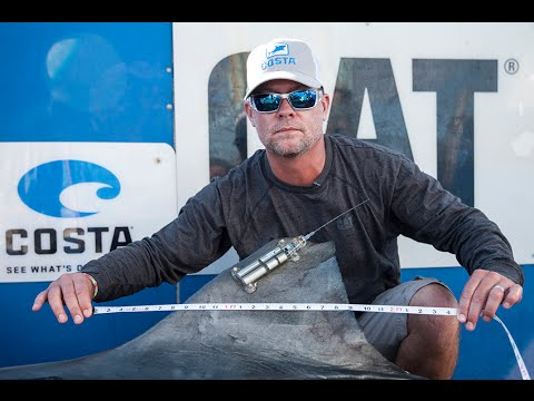 Expedition Western Australia: Tagging Tiger Sharks