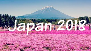 My Japan Trip! -Amazing Things To Do In Japan!