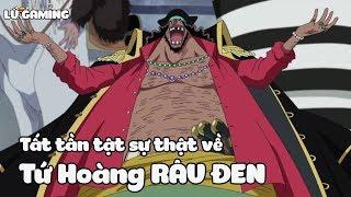 Tất Tần Tật Sự Thật Về Tứ Hoàng Râu Đen - Marshall D. Teach - Khám Phá One Piece #3
