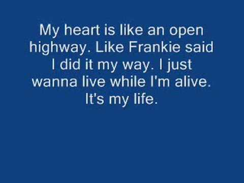 Bon Jovi  Its my life w lyrics