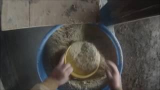 Feeding heifer calves