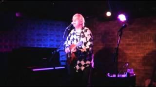 Watch Robyn Hitchcock Transparent Lovers video