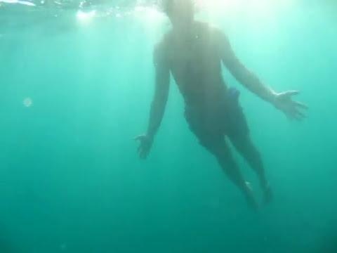 Nadando con Lobos Marinos en la Paz BCS