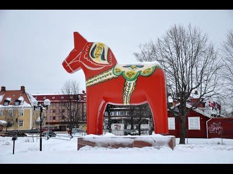 Laika Arctic Experience   Day 34   Mora   Oslo