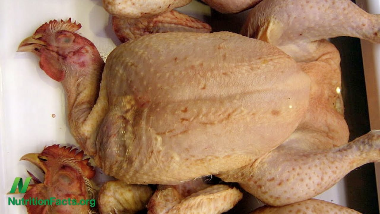 Arsenic in Chicken