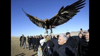 Binali Yıldırım'ın kartalla KOMİK imtihanı / Moğolistan
