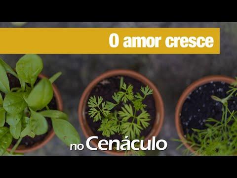 O amor cresce | 19/02/2021