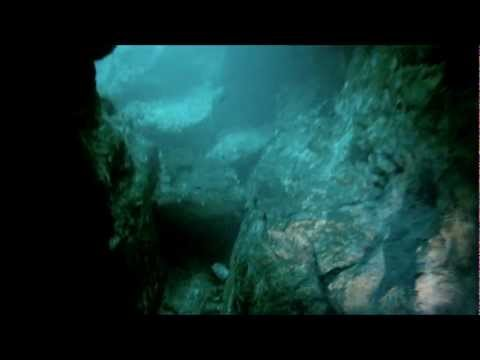 Free Diving - From Blue Spring State Park to Wekiwa Springs State Park - HD Go Pro Hero