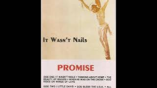 It Wasn't Nails / Promise