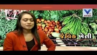 Benefits of  Organic farming | VTV Gujarati | Kheti