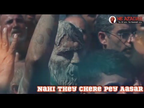 Dream Karbala | Taman'na maut ki lekar gaya tha karbobala |Best Noha Status |Arbaeen 2019 | Weazadar
