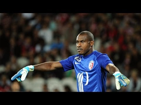 Vincent Enyeama Best Saves | LOSC Lille | 2013-14