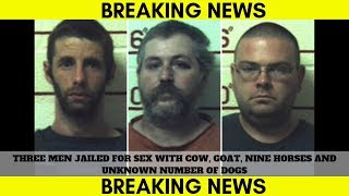 Three men jailed for sex with cow, goat, nine horses and unknown number of dogs