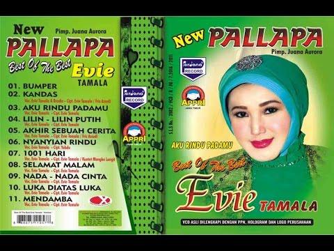 Evie Tamala - Kandas  - New Pallapa [ Official ]