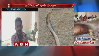 Monsoon effect : 48 snake bite cases reported this month | Krishna District