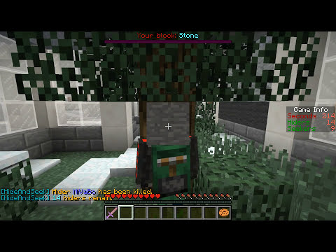 Minecraft Mini-Game: Hide And Seek w/ Team DnA - Bully Blocks!
