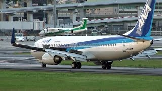 [伊丹空港・雨上がり] Beautiful scenery after rain! Air Nippon Boeing 737-881 at Osaka Itami Airport (全日空)