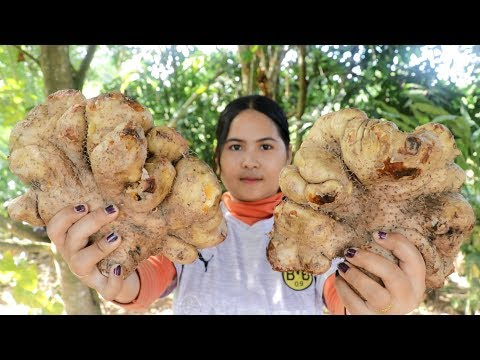Awesome Cooking : Potato Dioscorea esculenta Dessert Delicious Recipe - Cook & Eating Food Show
