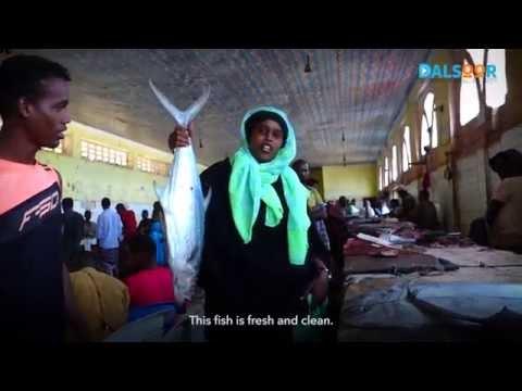 Brexit: Kusoo noqda Soomaaliya - Come back to Somalia.