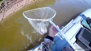 Рыбалка на Иртыше конец августа 2017
