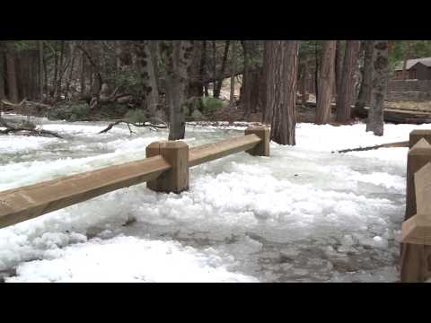 Yosemite Nature Notes - Episode 9 - Frazil Ice