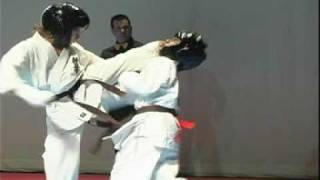 Karate kyokushin fight ko / kicks