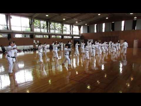 Treino do doujo Nikkei Karatedo com Seino Sensei e Miura Sensei