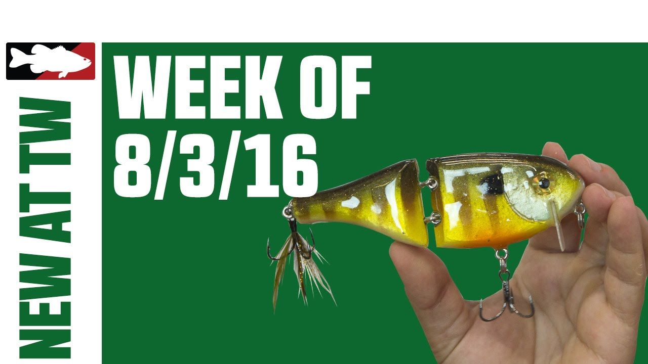 What s New At Tackle Warehouse w  Jake Cotta    8 3 16