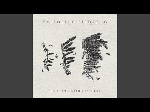 Download  The Sinking Question Gratis, download lagu terbaru