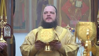 День памяти святителя Серафима (Соболева)
