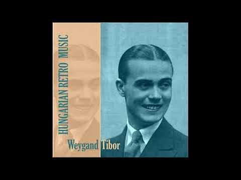 Weygand Tibor: Nincs vagyonom (Kisszakasz)