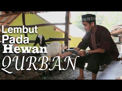 Serial Fikih Islam 2 - Episode 13: Berbuat Ihsan Kepada Hewan Qurban - Ustadz Abduh Tuasikal