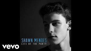 download lagu Shawn Mendes - Life Of The Party gratis