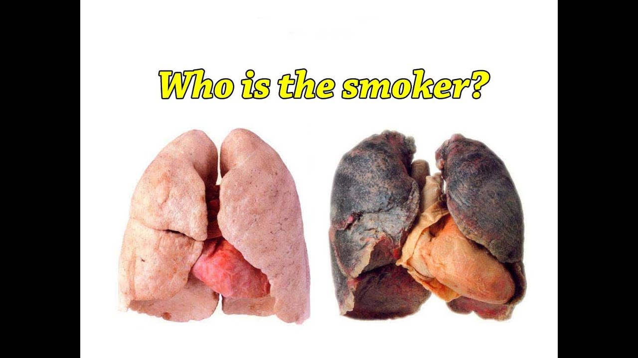smokers vs non-smokers research papers