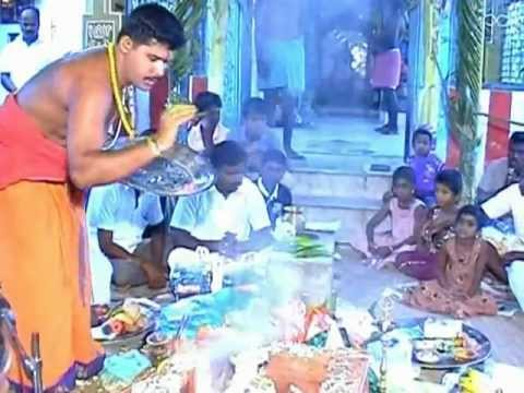 selvanayagapuram 29th sri krishna jayanthi part 1.flv