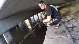 Fishing Under Bridges with Rednecks