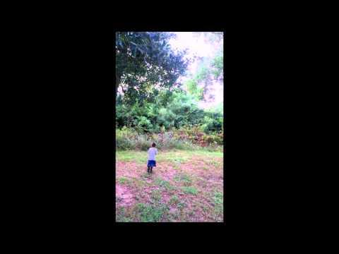 Nerf rabbit hunting