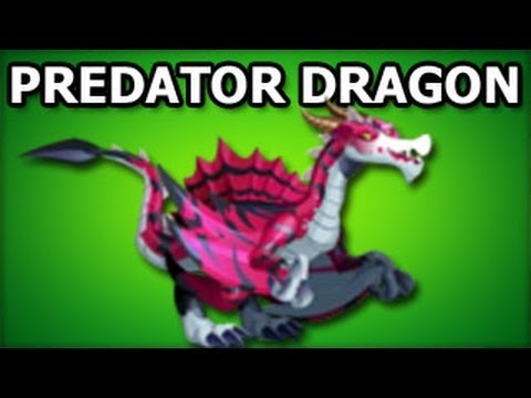 PREDATOR DRAGON Dragon City How To Get Any Dragon in Black Market
