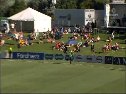 Cricket, Incredible catch assist on boundary.