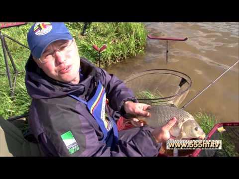 Рыбалка ловля весеннего карпа на