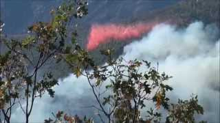 Yosemite Dog Rock Fire Bomber Drop 10 7 14