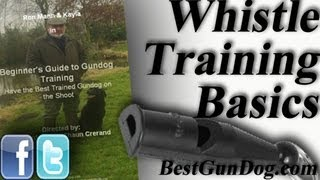 Hunting Dog Training (Whistle Training Basics)
